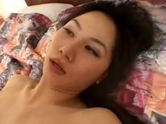 video 707 hotel wife