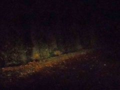 Exhib nocturne sur une aire de repos...3sur3