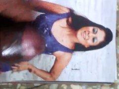 Actress nayanthara tribute