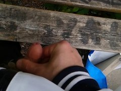 Me (Swedish) men cought jerking beside a park bench