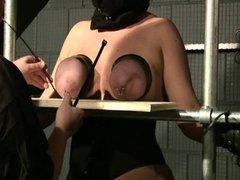 Breasts in Pain 6 - Sklavin Busty