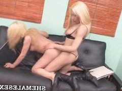 Blonde Shemales Getting At It