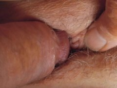 her pussy my cock...husbands hands!