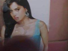 Cumming on sexy Sameera Reddy