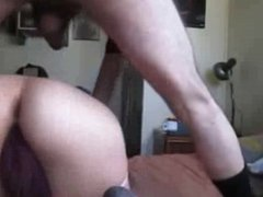 cheating italian wife and bull collection