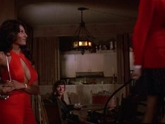 Pam Grier Foxy Brown compilation