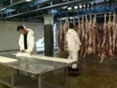 Italian Milf with 2 Butchers