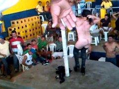 strip tease a teibolera de ecuador