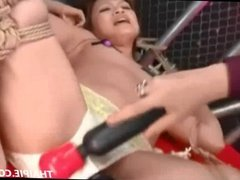 Asian Frog Tied And Toyed