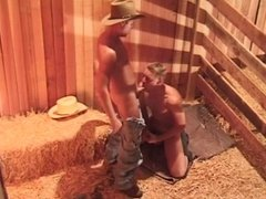 Cowboys fucking asshole in the haystack