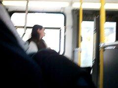 bus exib 7