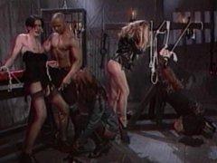 Tranny in BDSM bondage den