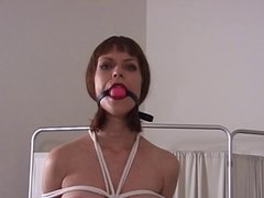 Cute Elkie bound and gagged by her master for some fun