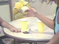 Erica Boyer & Christy Canyon Mash Gash in the Kitchen