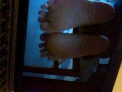 Tribute cum soles