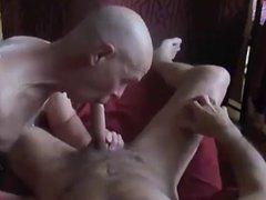 suck a cock