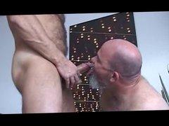 Bald Hairy Daddy Bear(s)