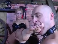 Worship your mistress feet