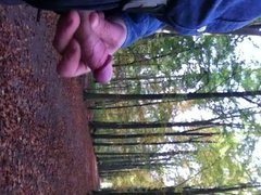Public masturbation in woods