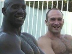 Black & White Gay Sex