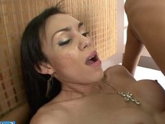 Shemales and a babe group anal with guy