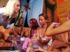 Lesbian party babes licking muffs