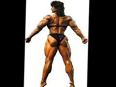 Female bodybuilding fbb bodybuilder amazons