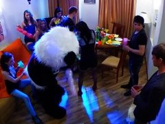 Orgy at a party with a teddy panda