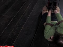 Ballgagged hogtied bdsm submissive squirming