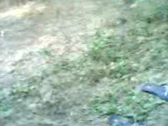 ngentot di kebun