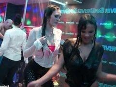 Sexy girls dancing erotically in a club