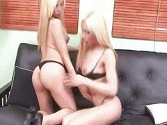 Two hot shemales stripping and teasing each o