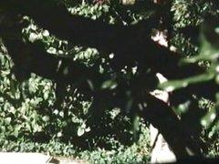 Miami Spice (1986) clip2