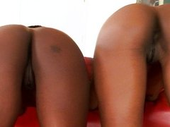 Ebony kissing lesbian threesome
