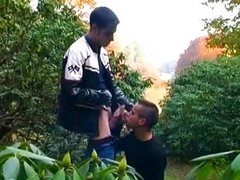 Eager teen gays sucking in the bush