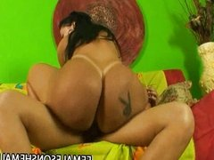 Big butt Latina fucked by shemale