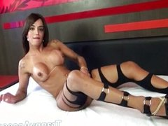 Sensual shemales in nylons gets playful