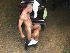 Horse trainer needs some big cock