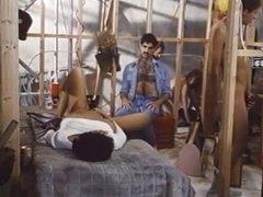 Vintage Threesomes - Vanessa Del Rio