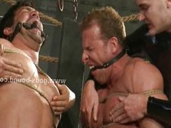 Gay locked in cage tied and tortured