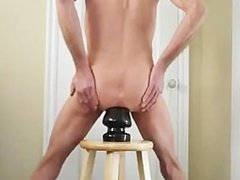 Anus and Ass Stretching Giant Butt Plug