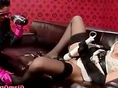 Classy sexy chick gets fucked by cock