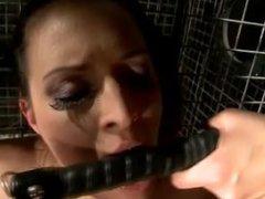 Lezdom queen humiliates her bonded slave