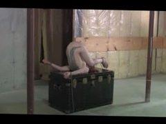 Wasteland Bondage Sex Movie - Leila and Her Trunk(Pt. 1)