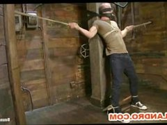 Cock Slave BDSM Training in the Dungeon