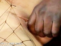 Latina beauty spreads her legs for a big black cock