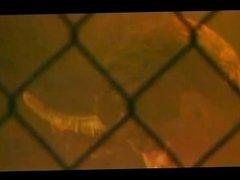 Never Ending Brunettes disc 01 - Scene 2