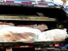 Du scheiss Transvestitenschwein fliegst in den Muellpresswagen rein!