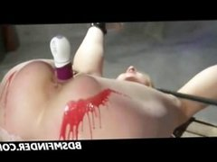 Toy Wax Spank And Shock