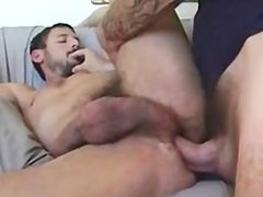 Dan Fisk raw fucks and breeds bearded guy